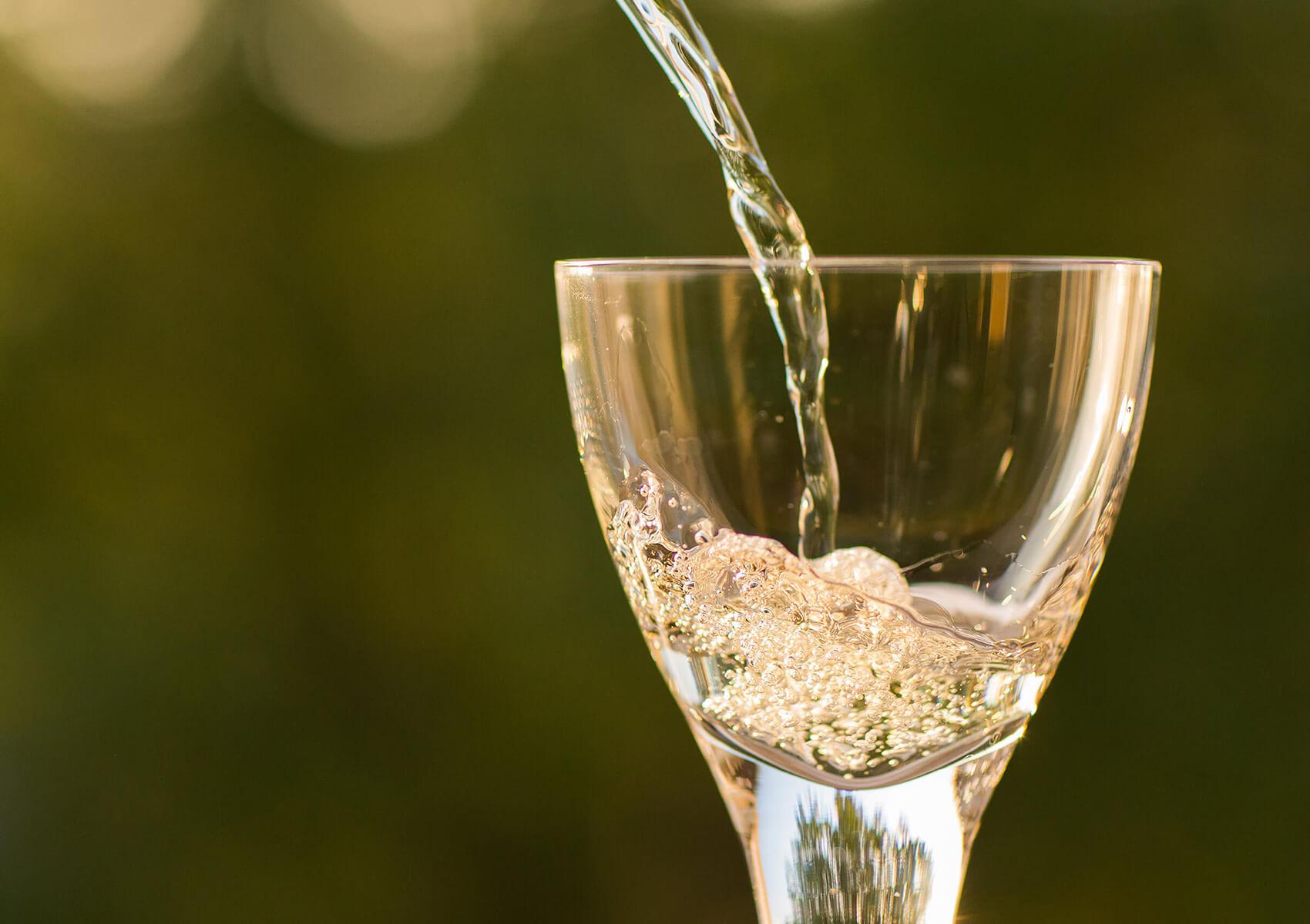 Ospaen Servis grifos de vino
